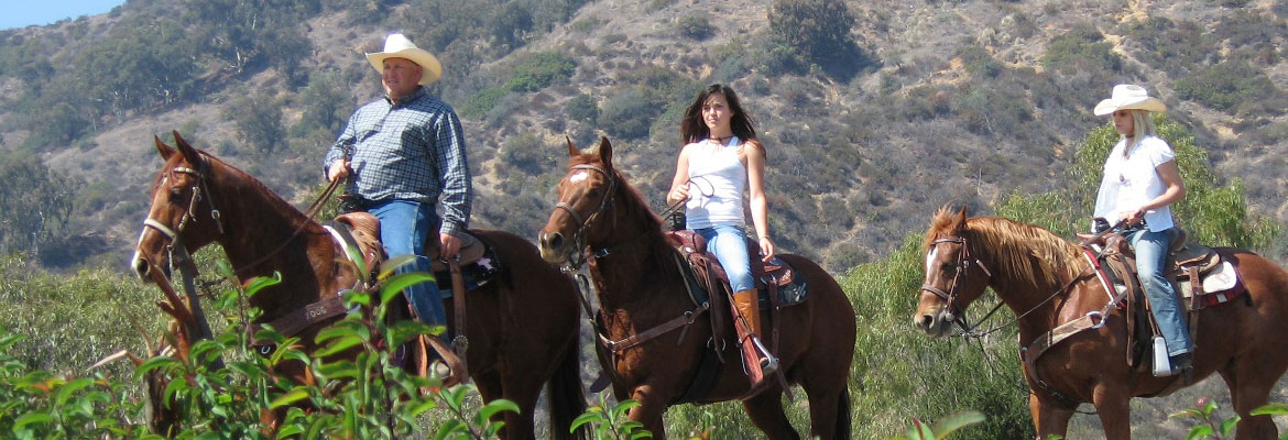 hollywood on horseback
