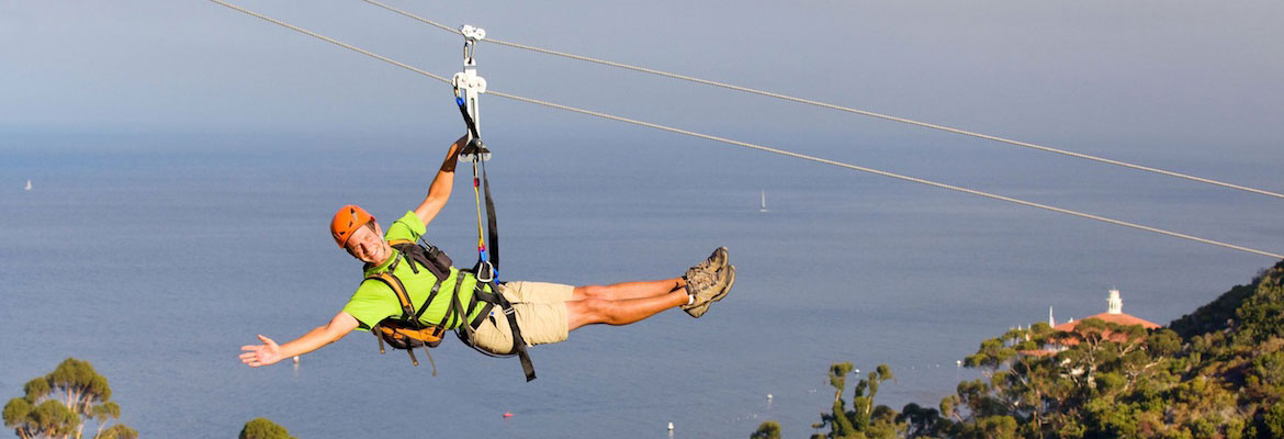 Catalina Island Zipline Eco Tour From Anaheim Or Los Angeles