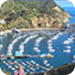 catalina island tour